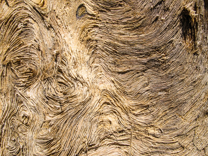 ONP Weathered Wood.jpg