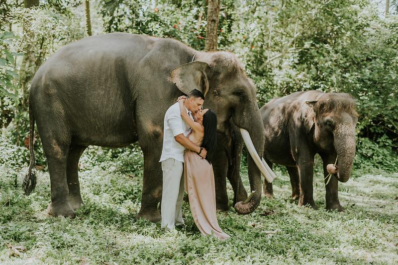 VTV_family_photoshoot_elephants_Bali_ (105).jpg