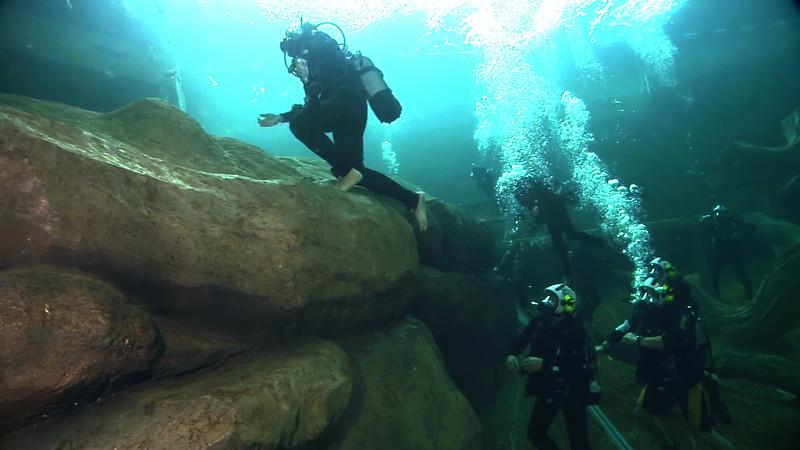 Underwater Walk Edit.00_01_44_11.Still036.jpg
