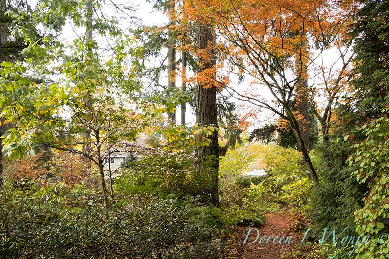Dietrick fall garden_2107.jpg