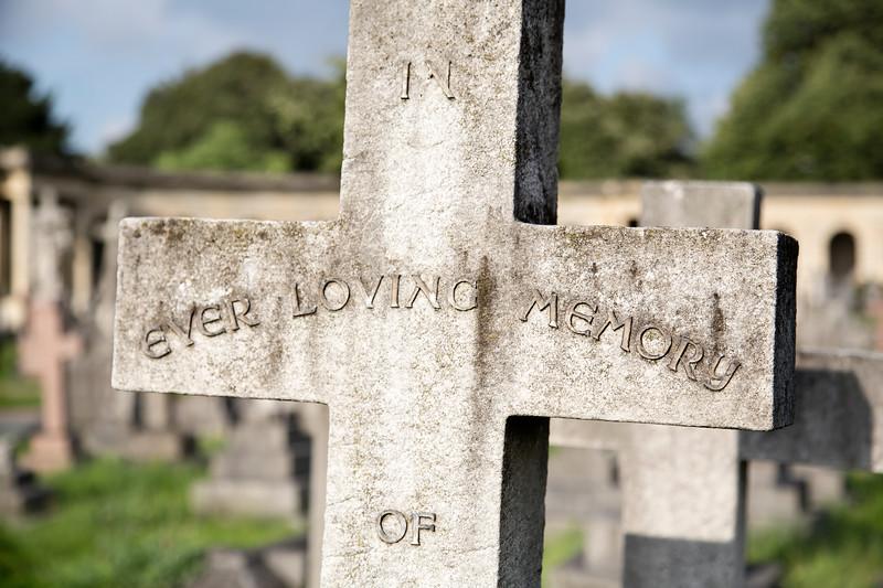 In Ever Loving Memory Of.jpg
