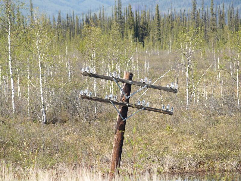 Yukon Territory, Alaska Highway, May 2007.