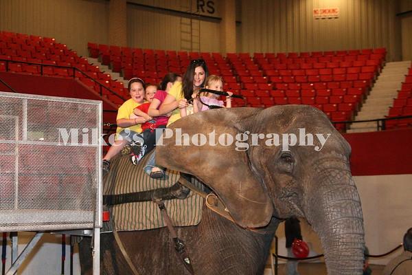 Sahara Shrine Circus 2011