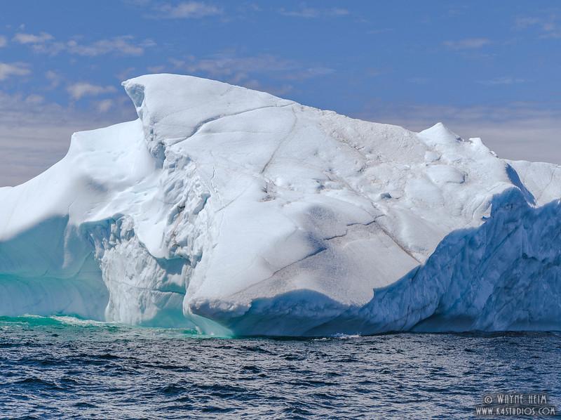 Iceberg 60  Photography by Wayne Heim