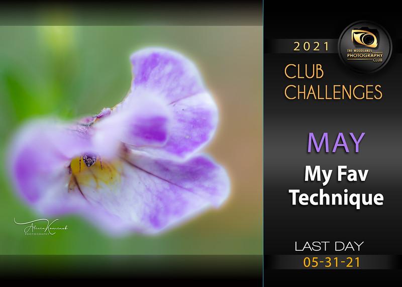 MayChallenge2021.jpg