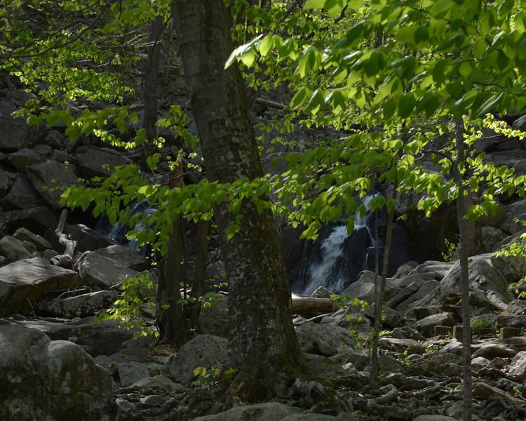 Hacklebarney falls.jpg