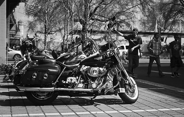 0423 monochrome  Harleys.