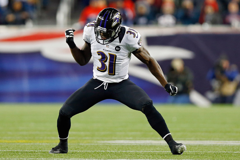 . Bernard Pollard #31 of the Baltimore Ravens celebrates a fumble recovery against Stevan Ridley #22 of the New England Patriots in the fourth quarter during the 2013 AFC Championship game at Gillette Stadium on January 20, 2013 in Foxboro, Massachusetts.  (Photo by Jared Wickerham/Getty Images)