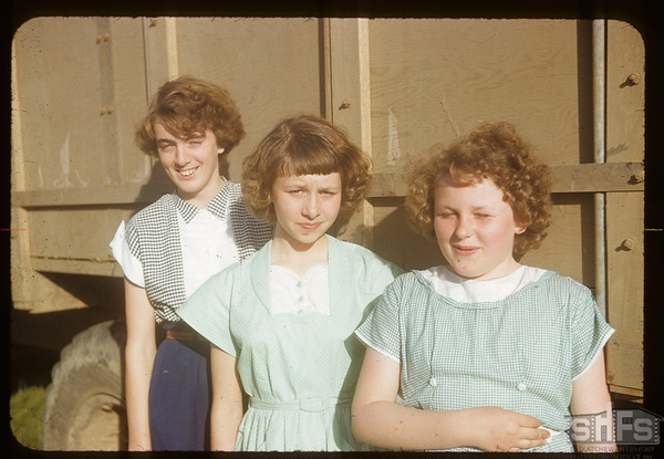 Girls at Aneroid Calf Club show; Jackie & Joan Perkins and Kathleen Robins. Aneroid. 06/11/1953