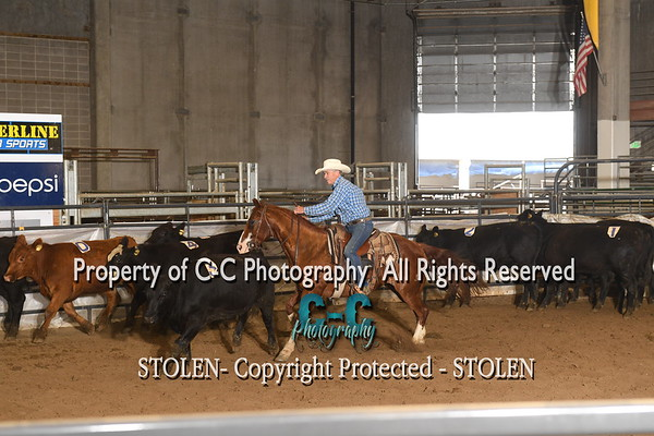 #8 The Daddy RSNC July/18  Cheyenne WY