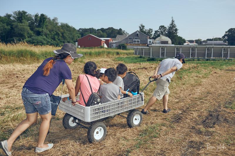 Cider Hill Farm 57.jpg