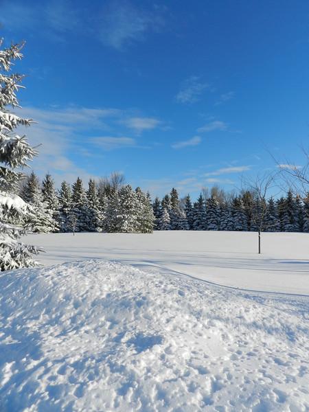 fantastic snow-7145.jpg