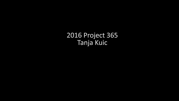 2016 Project 365 Slideshow