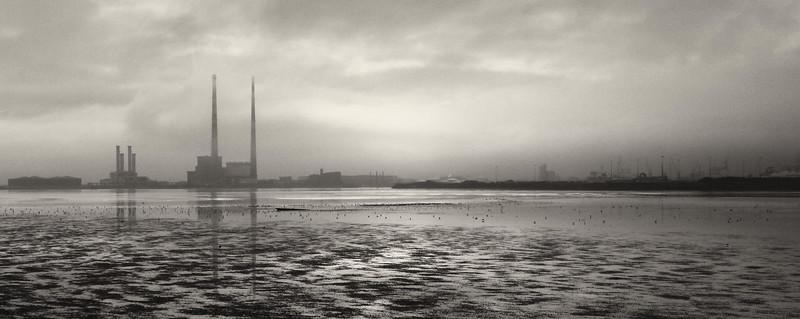 Landscapes - 2010