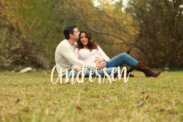 Vanessa Maternity Session