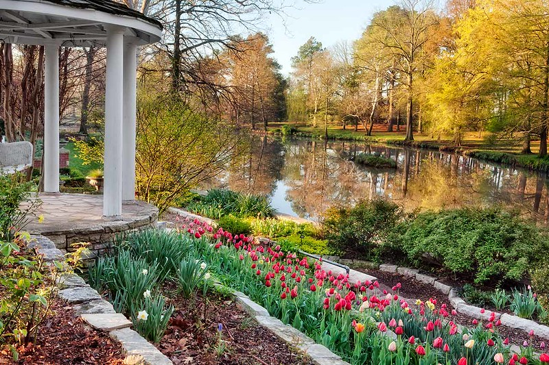 Gazebo, Tulips, and Lake