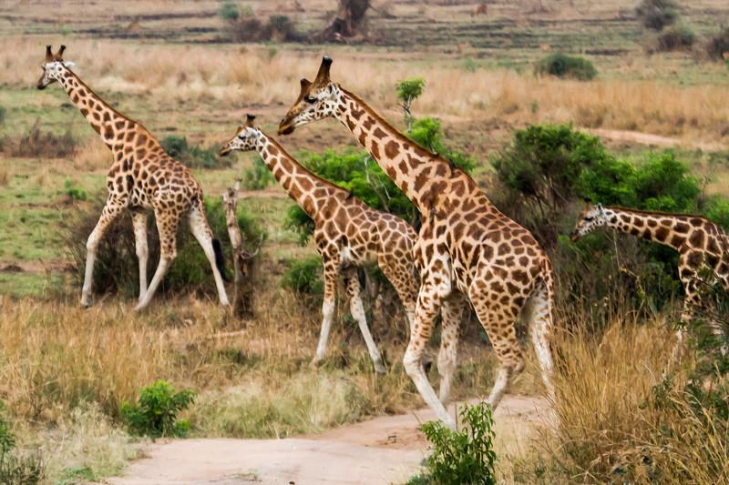 Uganda_GNorton_03-2013-20-3.jpg