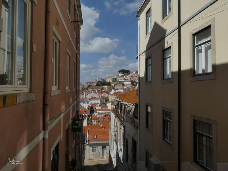Lisbon August 19 -2.jpg