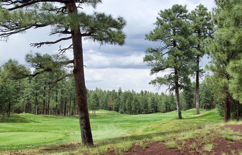 Torreon Golf Course,