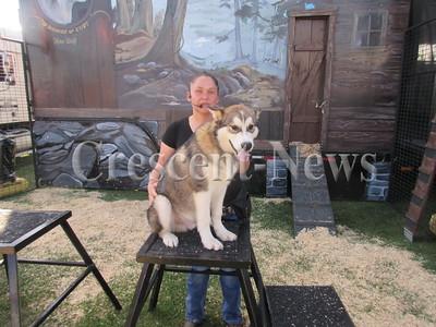 08-23-16 NEWS Wolves