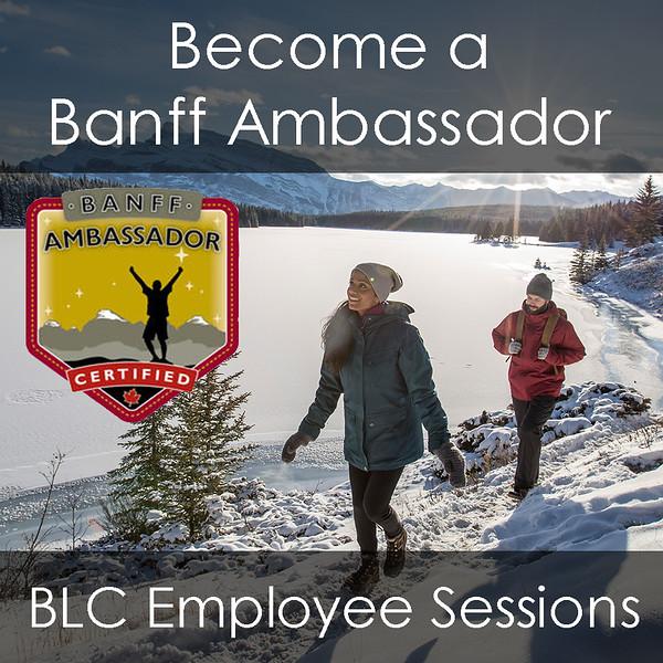 Feature Image - Banff Ambassador.jpg