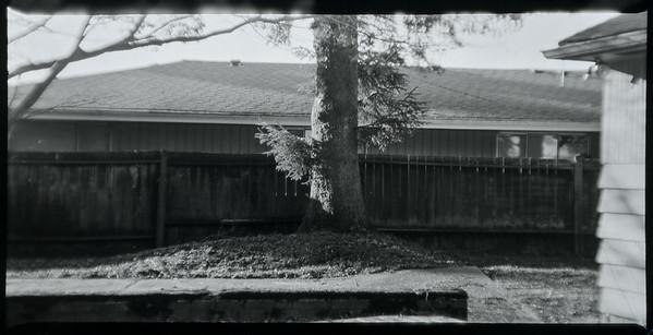 Film Experiments
