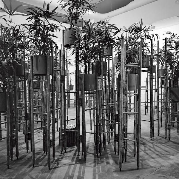 Biennale_2016_Bessa-3