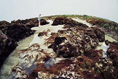 Asilomar 1998