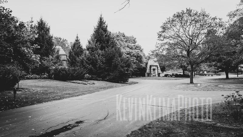 GracelandX100F-70.jpg