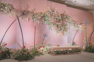 Alwan Flowers / Floral Shades