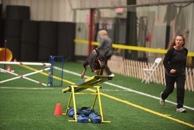 Gloucester County Kennel Club AKC Agility Trial April 7-8