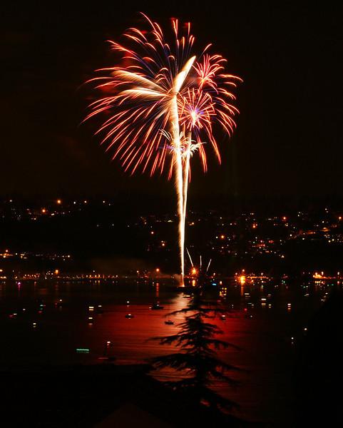 fourth fireworks 2009_39b.JPG