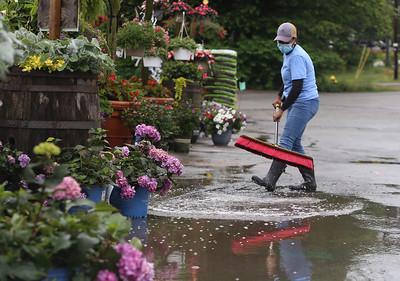 Rain at garden 1in Billerica 06