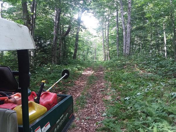 2019 Off Season Trail Work