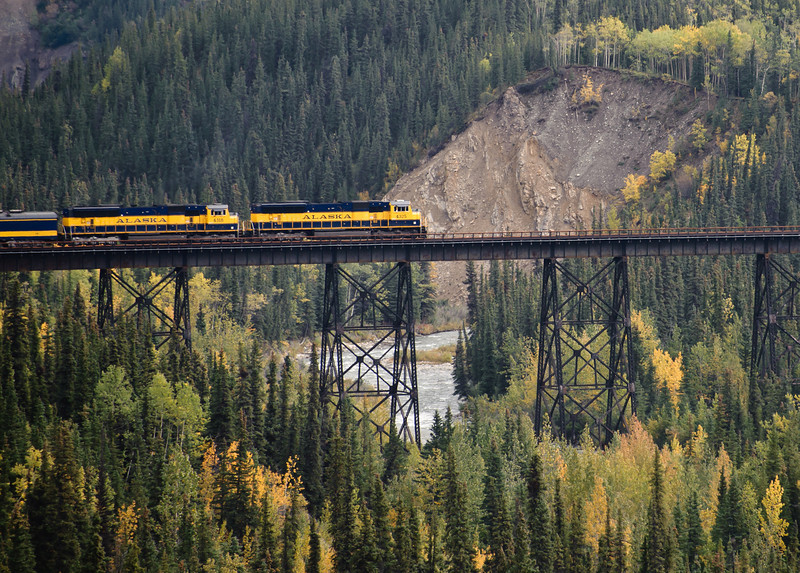 The Alaska railroad passenger train crosses the bridge in Denali, after just leaving the Denali station near the park entrance.