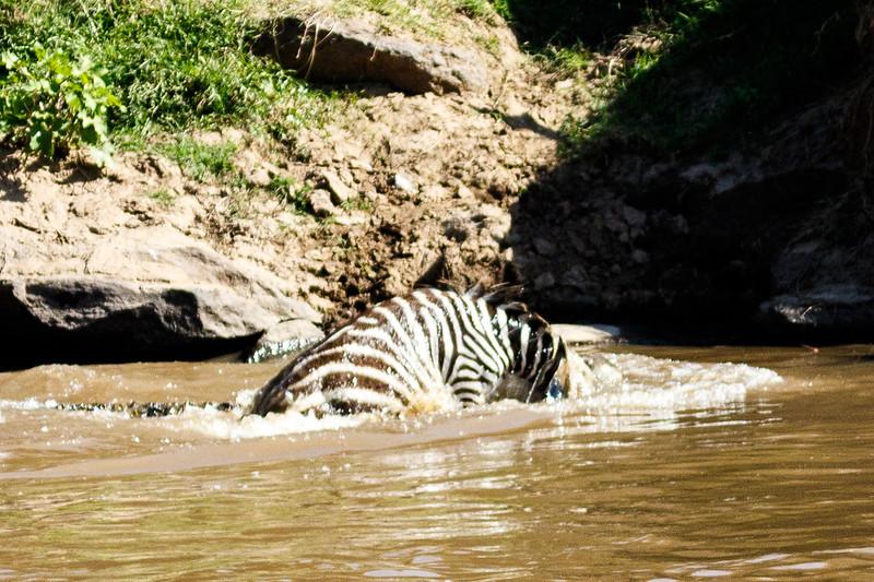 Kenya 2015-02665.jpg