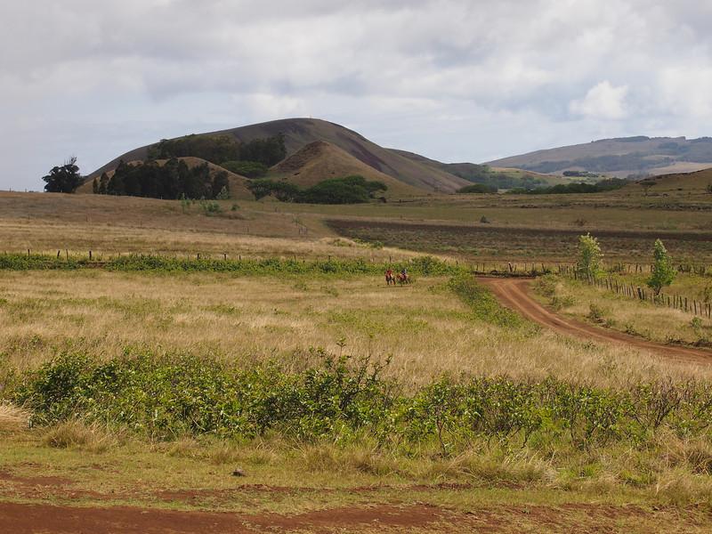 2011.CHL.Easter Island.188.jpg