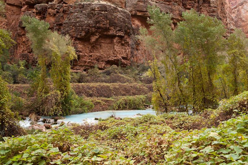 Grand Canyon October-0512.jpg