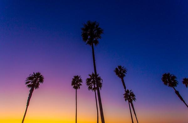Sunset 11-2