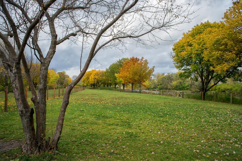 Long Park Path