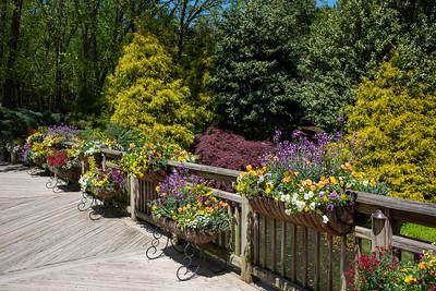 Gibbs Gardens - April 2021