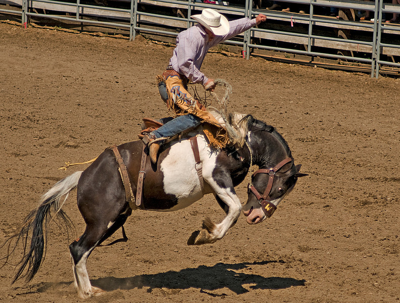 COOMBS RODEO-2009-3664A.jpg