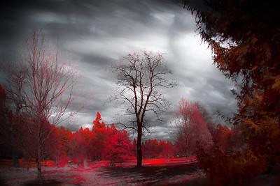 Infrared - Landscape