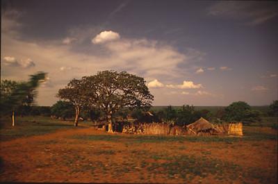 africa0038.jpg