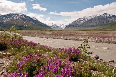Day 6, Fairbanks to Valdez