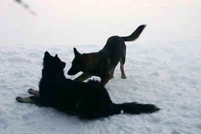 2010 Brita and Kobie snow shots