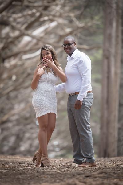 Heena & Barry Engagement Shoot
