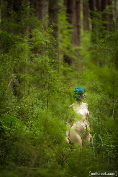 creek171102-0478.jpg