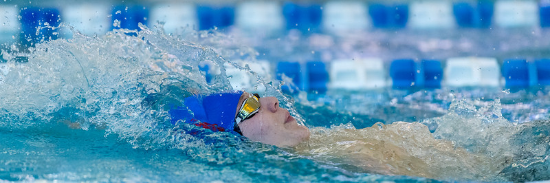 2018_KSMetz_Feb17_SHS Swimming_ State Finals_NIKON D5_5249.jpg