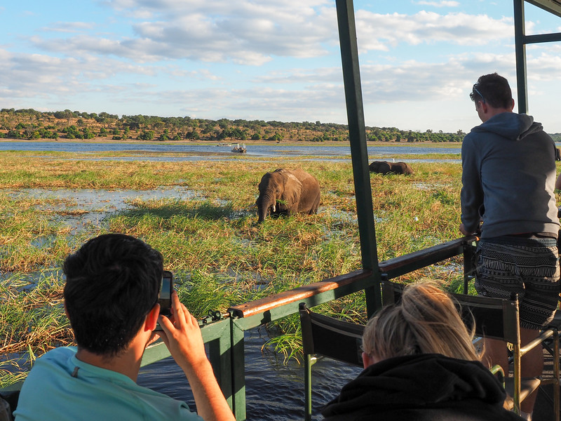 Boat safari in Chobe National Park